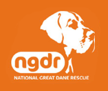 NATIONAL GREAT DANE RESCUE